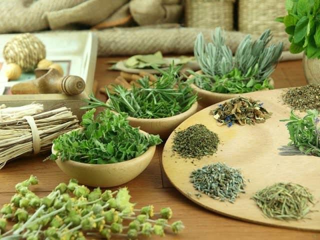 Зелень и травы для потенции