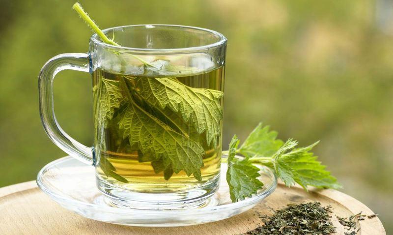 Чайный напиток из крапивы