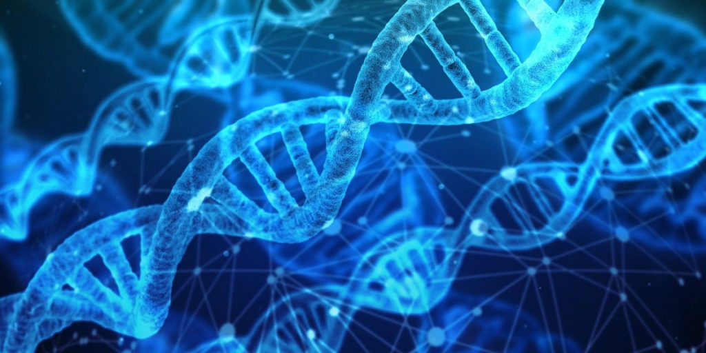 Изменения в ДНК