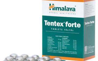 Эффективность применения Тентекс Форте при слабой потенции