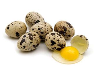 Перепелиные яйца для улучшения потенции – народные рецепты и советы медиков