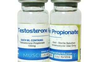 Применение Тестостерона пропионата и его влияние на мужской организм