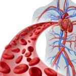 Нарушения функции кровотока